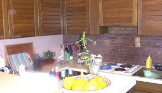 Location appartement f1 à Lambersart - Ref.L973 - Image 1